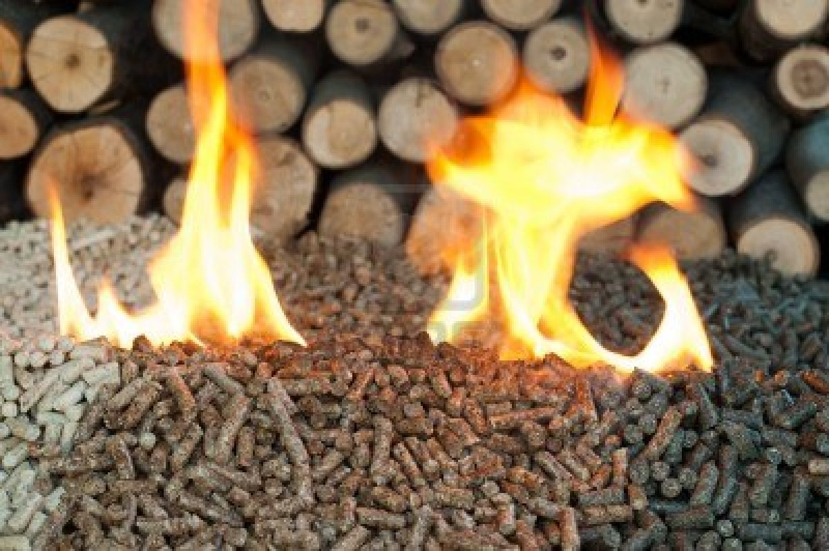 Pellets---Briquettes---Charcoal--Wood-pellets